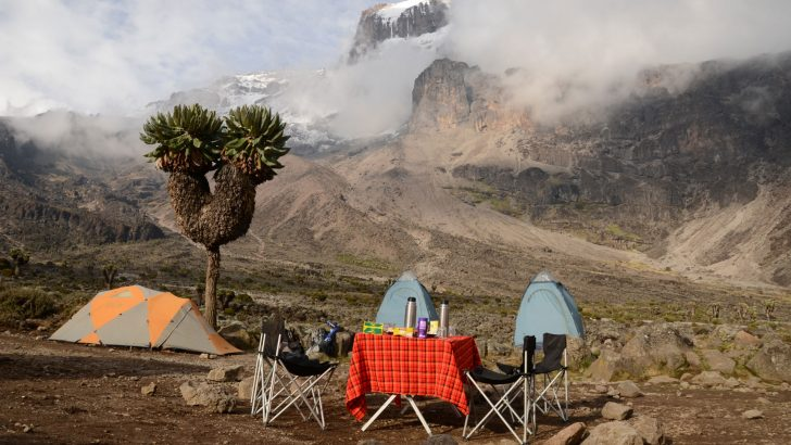 Safely to the top of Kilimanjaro