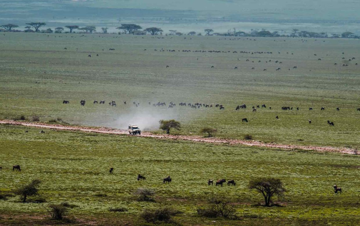 Tanzania pure and sustainable