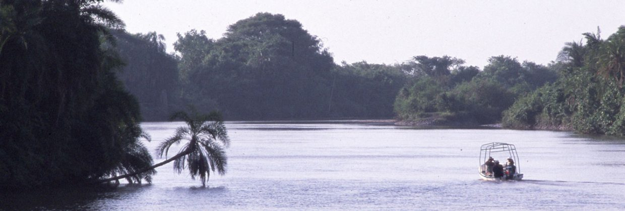 Saadani National Park