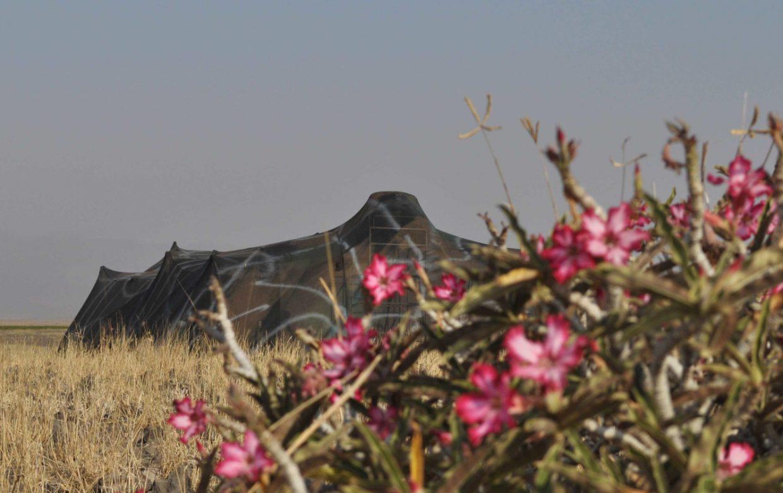 Explore Tanzania - Accommodatie Lake Natron - Lake Natron Camp
