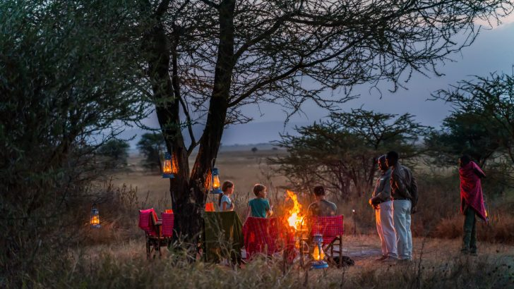 Dine underneath the African stars