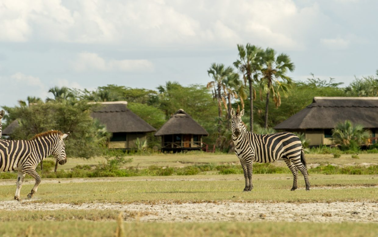 Explore Tanzania - Accommodatie Tarangire - Maramboi Tented Camp