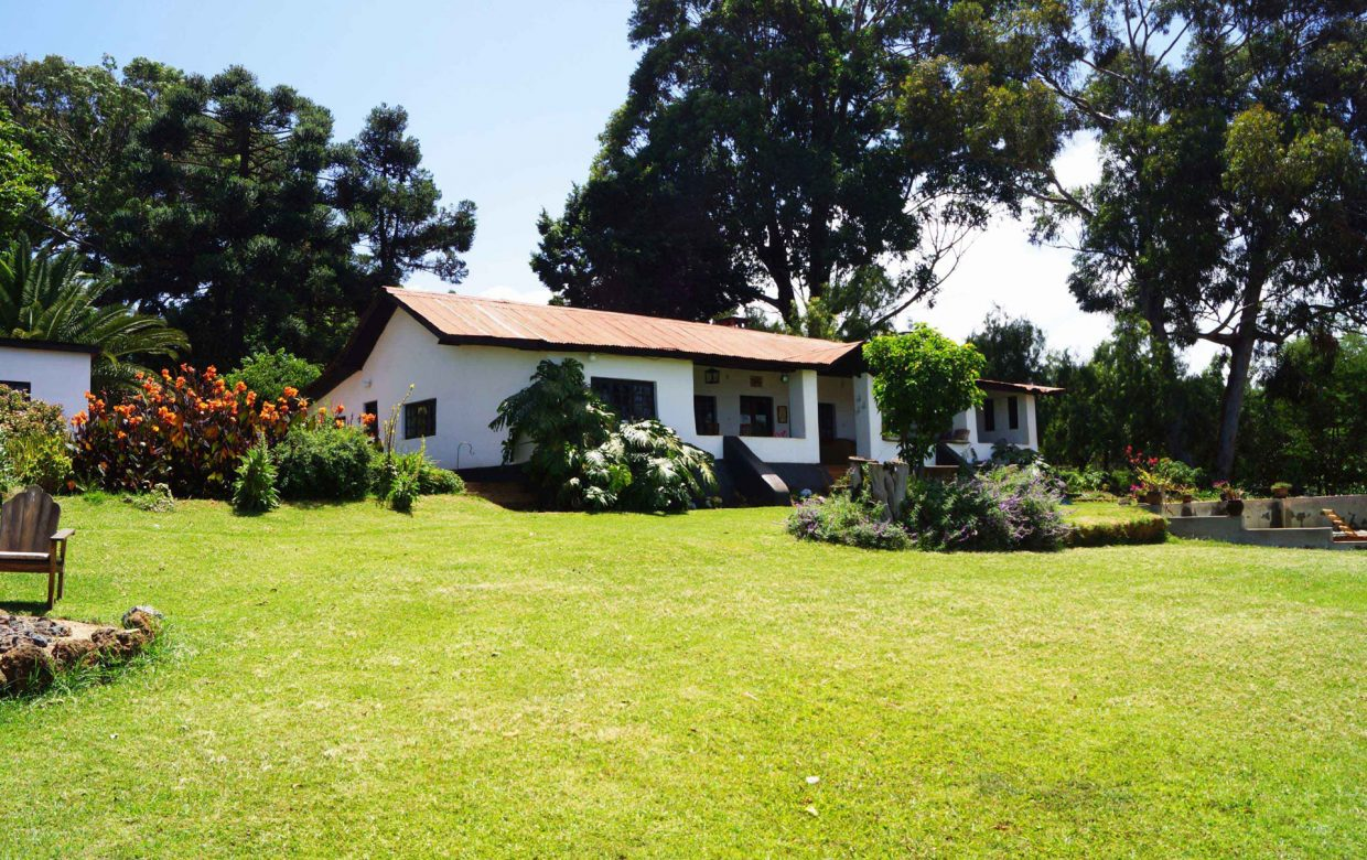 Accommodatie West Kilimanjaro - Simba Farm