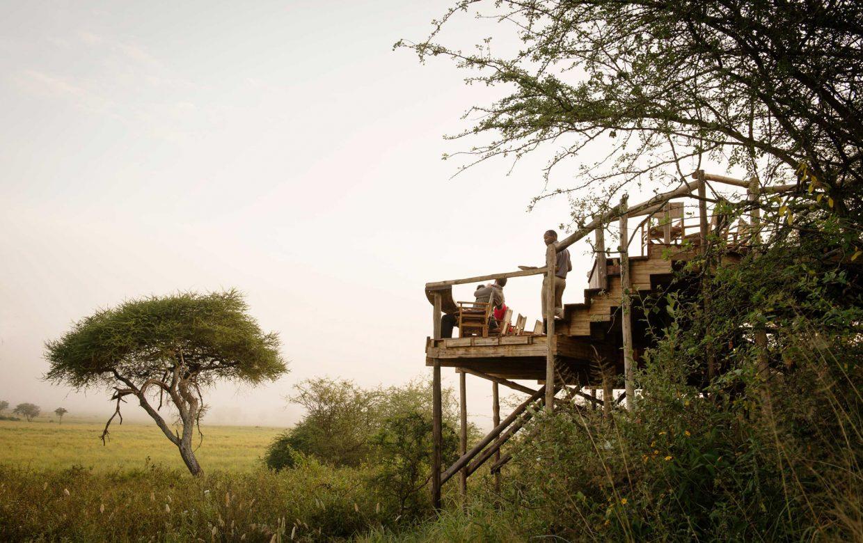 Explore Tanzania - Accommodatie Tarangire - Asilia Oliver's Camp