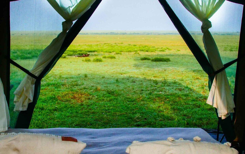 Green Camp Walk Zone