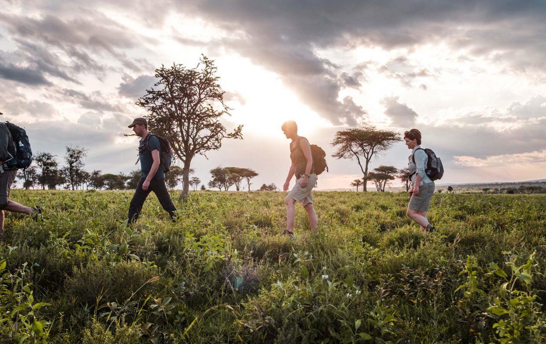 Green Camp - wandelen in Serengeti