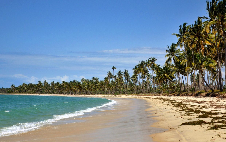 Accommodatie Saadani National Park - Kijongo Bay Beach Resort