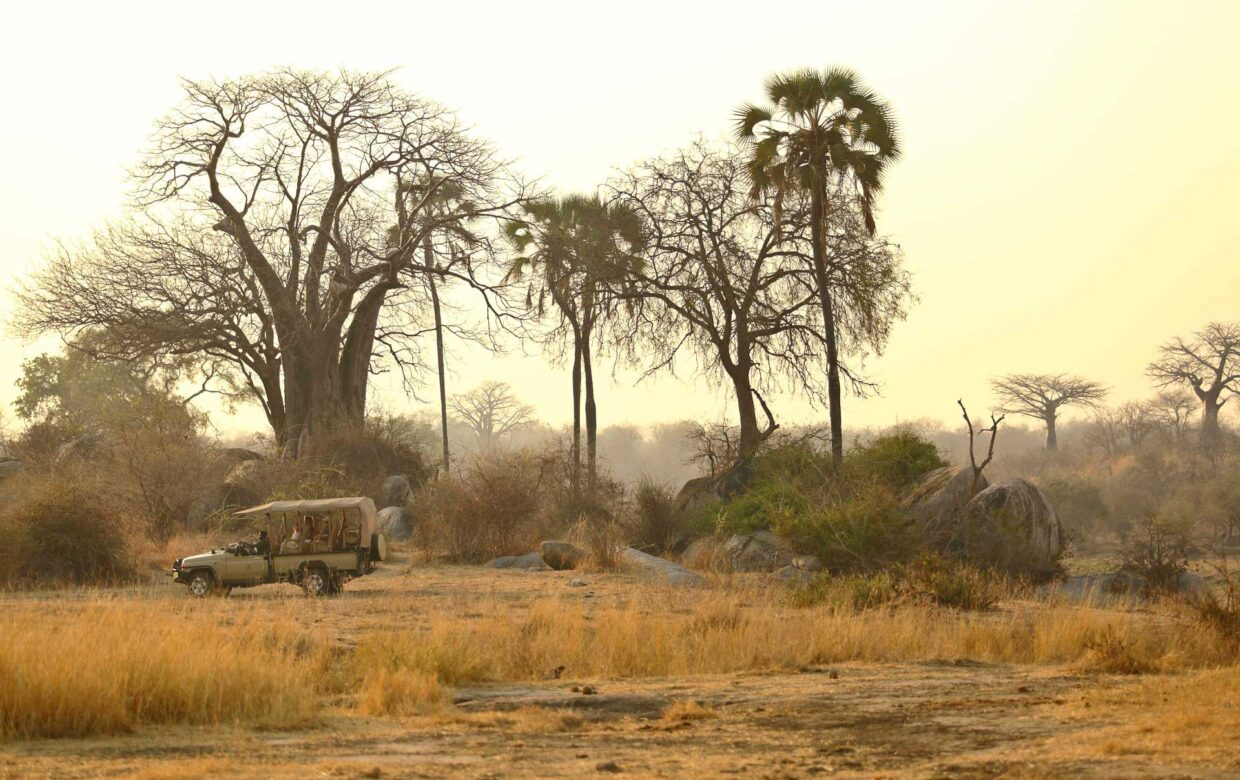 Ikuka Safari Camp