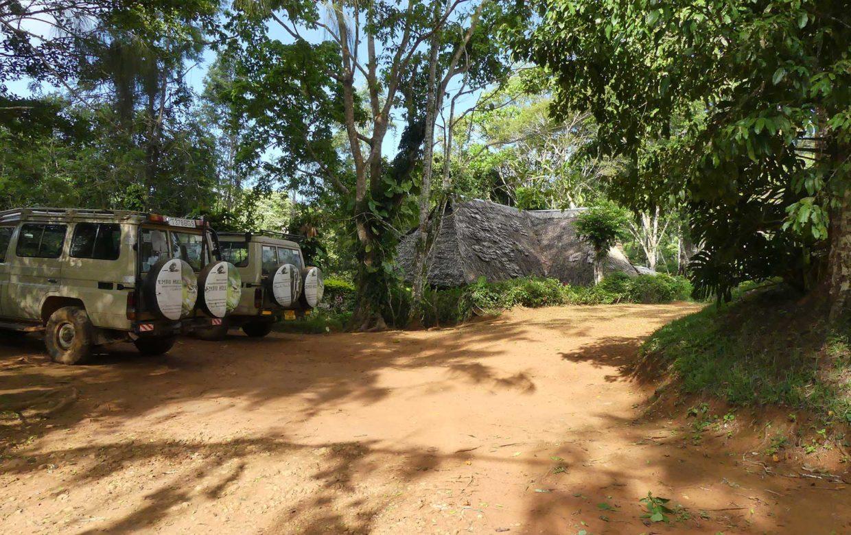 Usambara Mountains Explore Tanzania - Amani Forest Camp