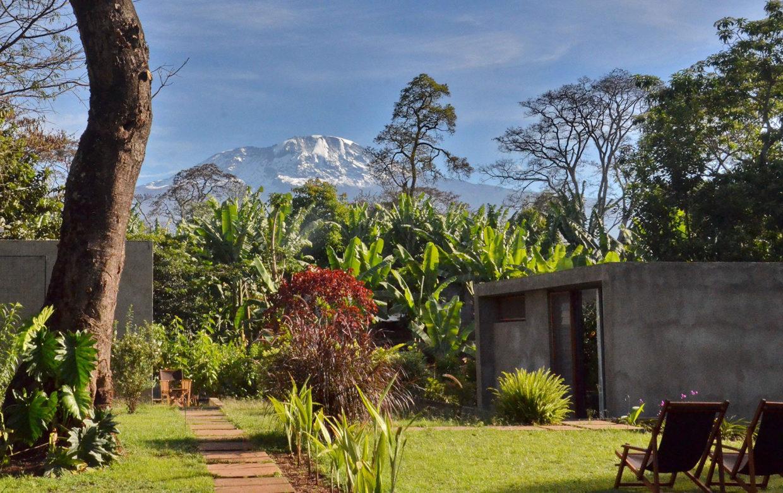 Accommodatie Kilimanjaro, Tanzania - Kaliwa Lodge