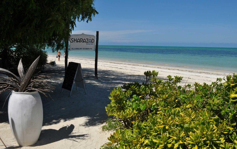 Delicious Zanzibar