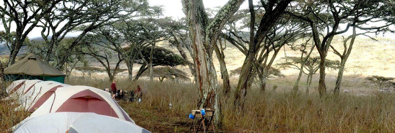 Student reis Tanzania kamperen