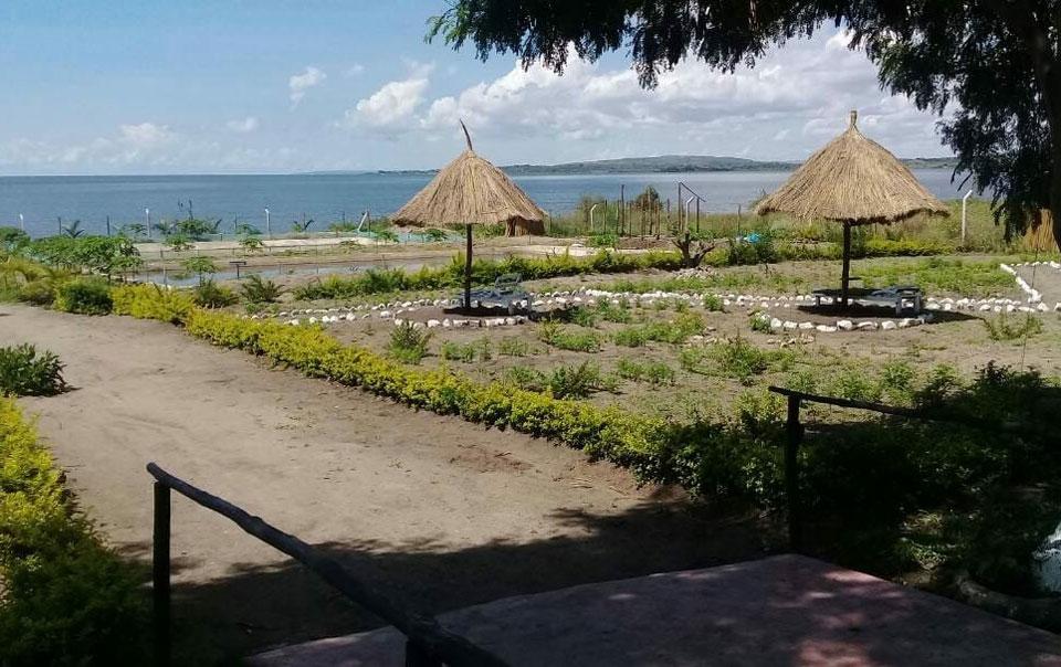 Mwanza Lake view Farm